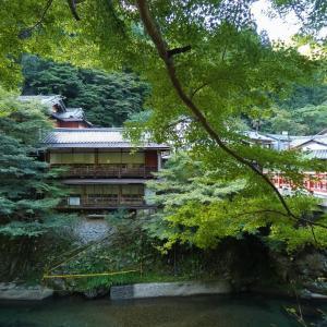清滝に眠る、くれない茶屋の石垣?