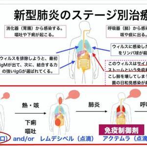 「新型コロナ」による日本の死者ー闘う戦略図