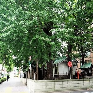 日本橋蛎殻 銀杏八幡宮、銀杏稲荷神社を参拝