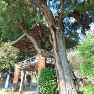 東京町田 大戸観音堂を参拝