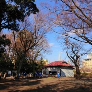 中央区共和 新田稲荷神社を参拝 2