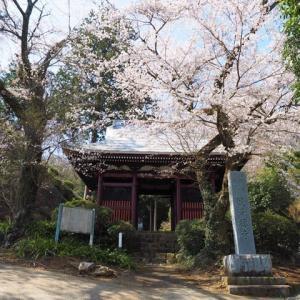 緑区中野 観音禅寺を訪ねて