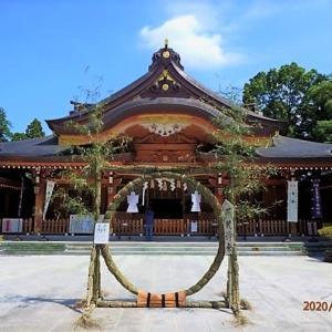中央区上溝 亀ケ池八幡宮を参拝、茅の輪が設置されていました。
