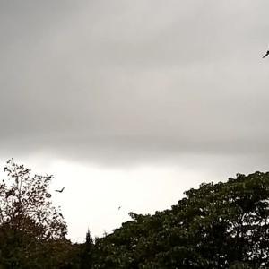 空の掃除屋と雷雨