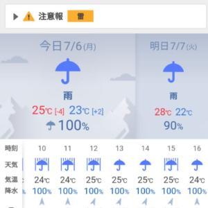 やっぱり、雨ばかりはイヤ!(¯―¯٥)と、直ってきた!?