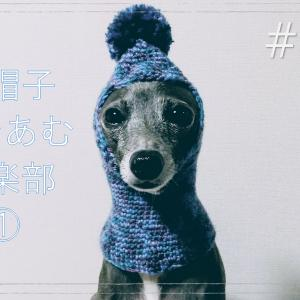 【犬の帽子】編み物初心者のSachi★のひとり お帽子あむあむ倶★YouTube♡イタグレアリス