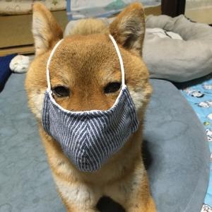 夏用マスク~♪
