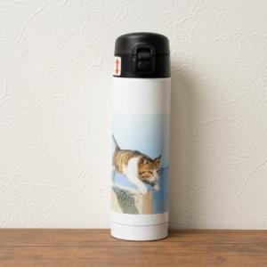 ステンレスボトル(ワンプッシュボトル300ml) | 飛び猫商店