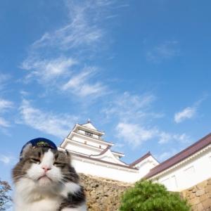 らぶ駅長と会津若松の鶴ヶ城へ行ってきました。