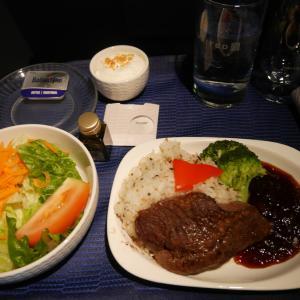 ユナイテッド航空 ビジネスクラス UA171便 グアム→中部 搭乗記【2019年旅行記11-11】