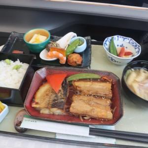 エバー航空 ビジネスクラス BR127便 名古屋中部→台北桃園 搭乗記【2020年旅行記6-2】