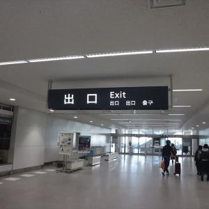 エアドゥ128便 ANA4828便 函館→中部 搭乗記 旅行自粛前最後のフライト【2020年旅行記6-9】