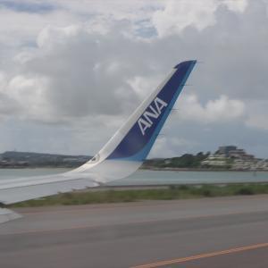 急に決めた沖縄旅 やりたい事・やった事まとめ 必要マイルが減額されたUA特典直前発券は想像以上に便利だった【2020年旅行記10-0】