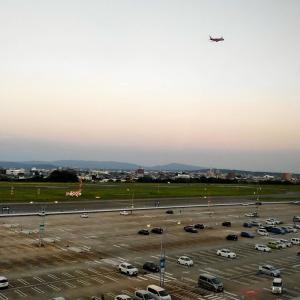 国際線ターミナルに徒歩圏(かも?)ビジネスホテル フィズ 名古屋空港 宿泊記【2020年旅行記17】