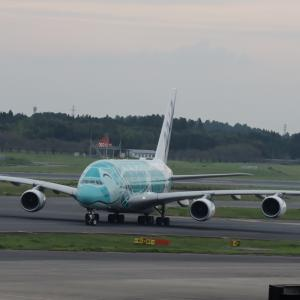 ANA A380 2号機 フライングホヌチャーターフライトを見学【2020年旅行記21‐4】