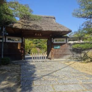 東山荘市民茶会「神無月茶会」、3月9日(金曜日)に開かれます。