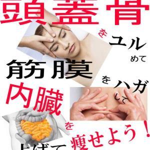 頭蓋骨ダイエットの痩せるキーワード1つ目♡頭蓋仙骨療法で「痩せる脳」を作ろう!