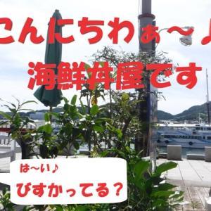 オリンピック! 日本!! 大活躍!!! コロナにも負けるな! マクス!! 手洗い!!! (^0^/おー♪