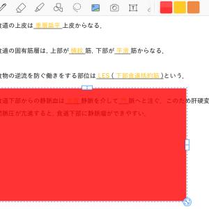 【iPad勉強法】ノートアプリで暗記用の赤シートを使う方法