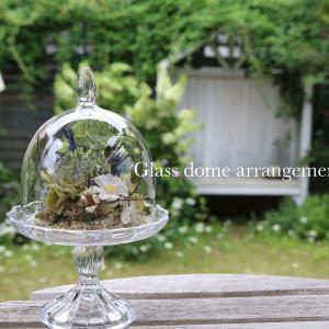 7月のlessonは♪glass dome arrangement❁⃘*.゚