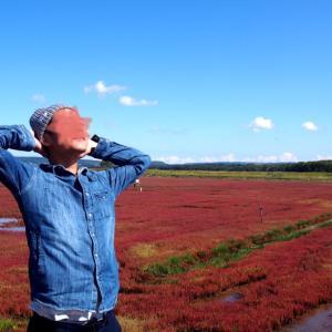 知床方面ドライブ①真っ赤なサンゴ草と絶景の旅☆