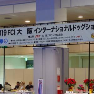 大阪インター 2019