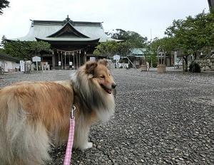 矢奈比賣神社へ行って来ました