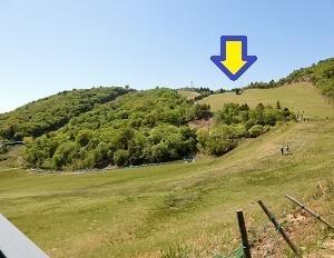茶臼山高原 芝桜まつり