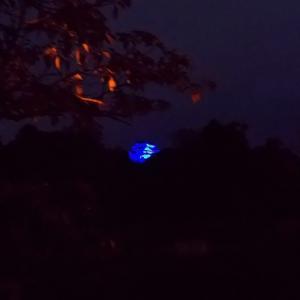 闇夜の○○城♪