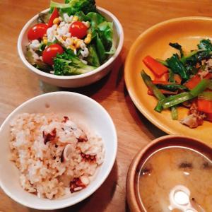 食材整理ごはん たこめしとか天ぷらとか