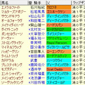 京都金杯2020 予想とレース結果、配当、過去傾向データ