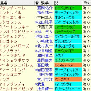 神戸新聞杯2020 予想《まとめ表》コントレイル