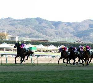 福島牝馬ステークス2019 予想【まとめ表】フローレスマジック
