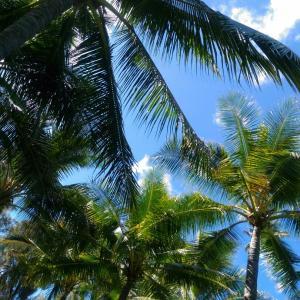 ハワイで気胸入院記録② 気胸発覚~入院当日