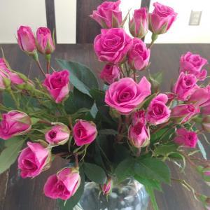 バラの花と糖尿病