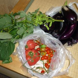 7月19日 「 夏野菜 」(喜楽太郎のFacebookより)