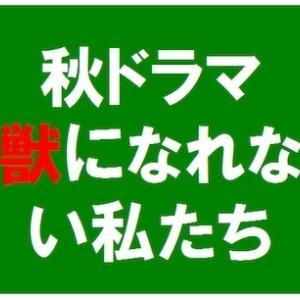 黒木華と松田龍平の熱愛が発覚!けもなれ撮影で急接近?ガッキーはぼっち!