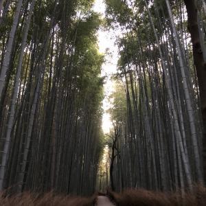 京都の旅館キャンセル代支払いは現金書留で・・