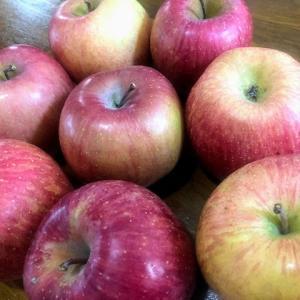 届いたリンゴがジャムに・・が、トラブル発生です。
