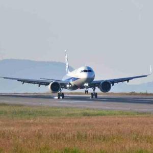 空港に行って、飛行機を眺めていた