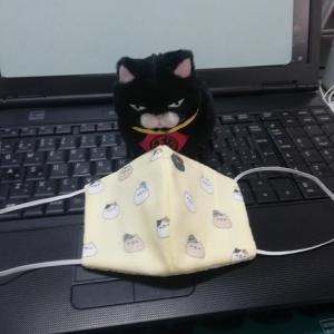立体布マスク作ってみた