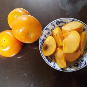 果物の秋!!