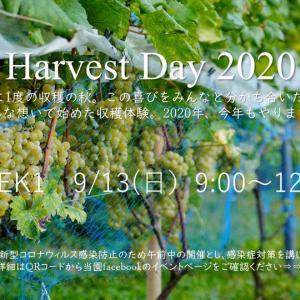 陸前高田市イベント Harvest Day 2020