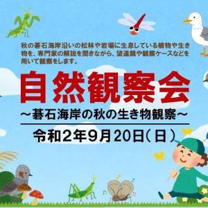 大船渡市イベント 自然観察会