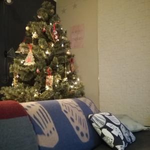 今年のクリスマスインテリア&イルミネーション
