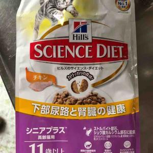 猫のごはんをヒルズのサイエンスダイエットに変えた