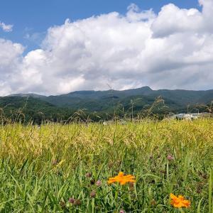 連休のたびに悪天候の長野県?