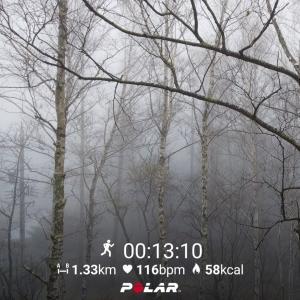 平成最後の日、朝から霧の中を軽く走る