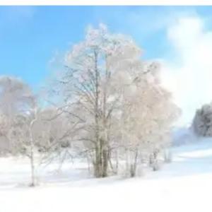 「立秋」こんなに暑いのに秋!季節外れの雪の夢を見る