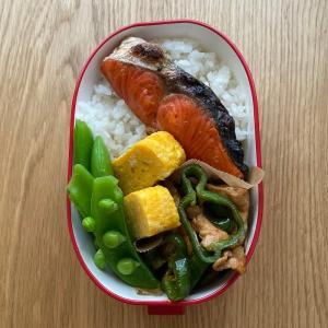 最近の娘弁当。とんかつ、鮭、チキングリルなど。
